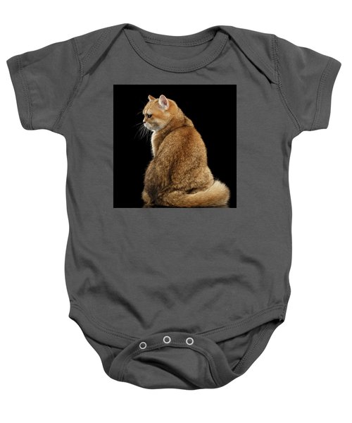 offended British cat Golden color Baby Onesie
