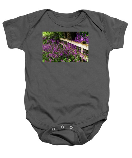 Old Fence And Purple Flowers Baby Onesie