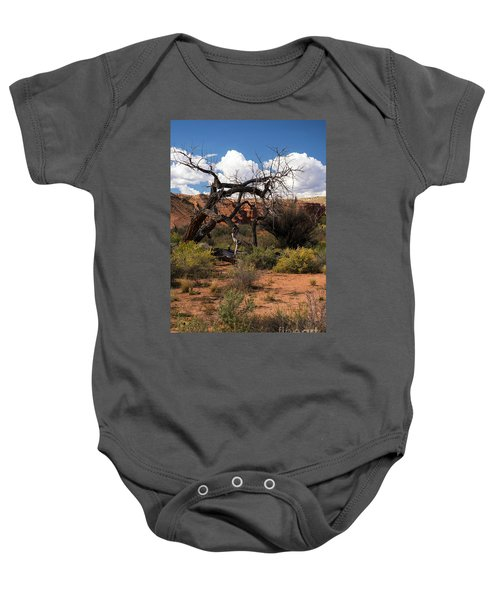 Old Tree In Capital Reef National Park Baby Onesie