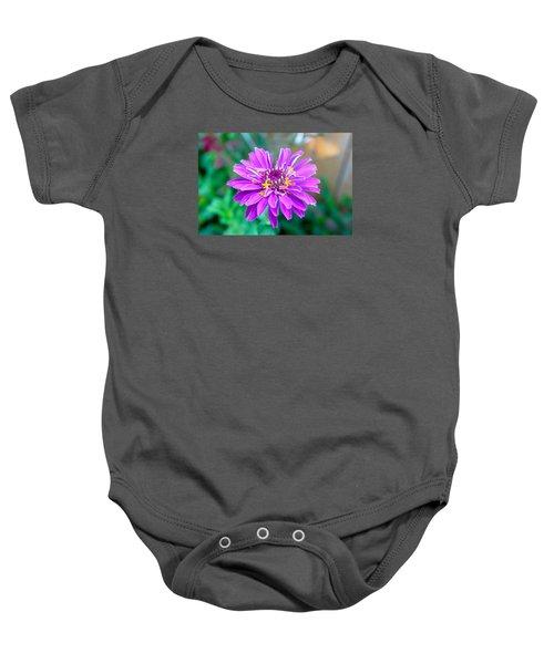 One Flower Circus Baby Onesie