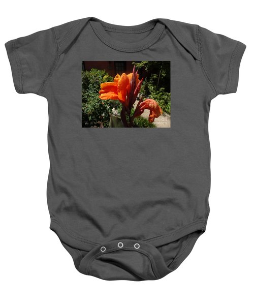Orange Canna Lily Baby Onesie by Rod Ismay