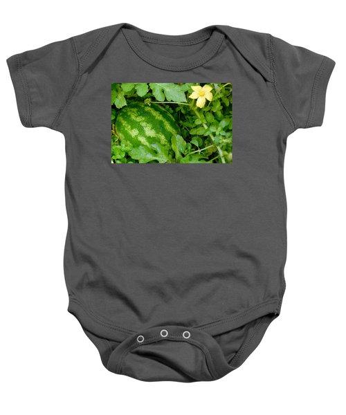 Organic Watermelon Baby Onesie