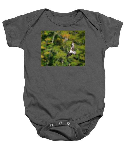 Osprey Baby Onesie by Bill Wakeley