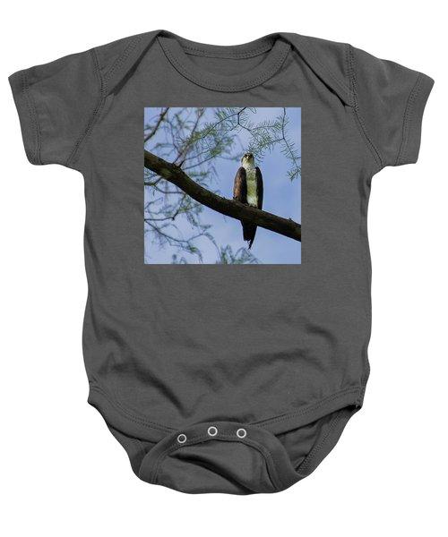 Osprey Baby Onesie