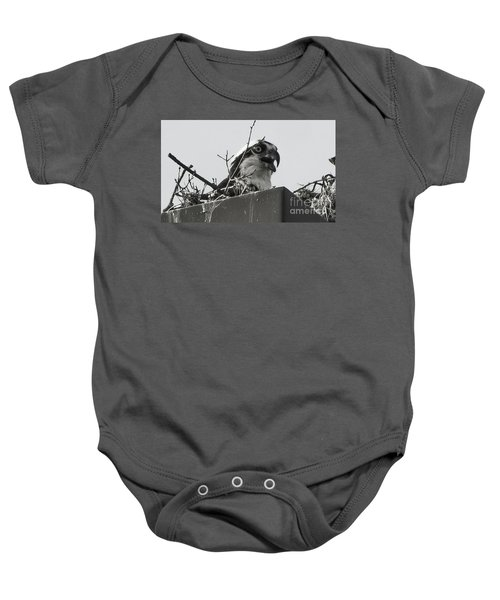 Osprey In Nest Baby Onesie