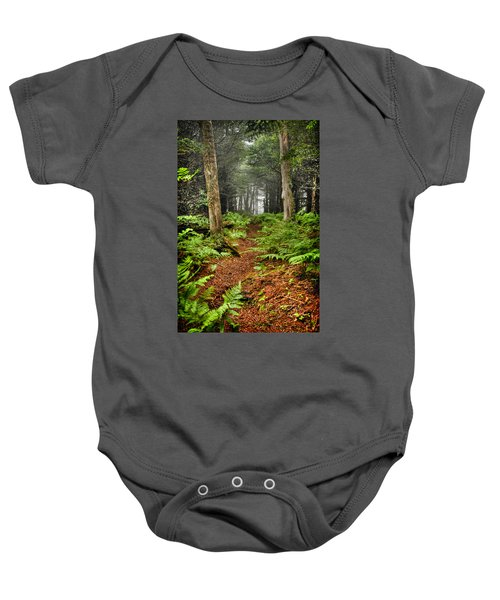Path In The Ferns Baby Onesie