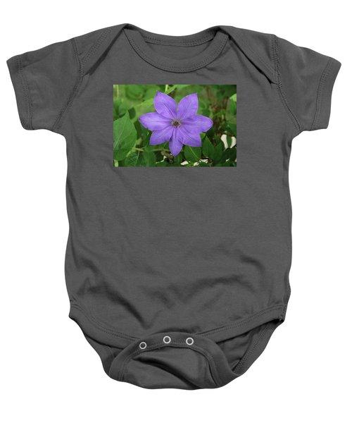 Clematis  Baby Onesie