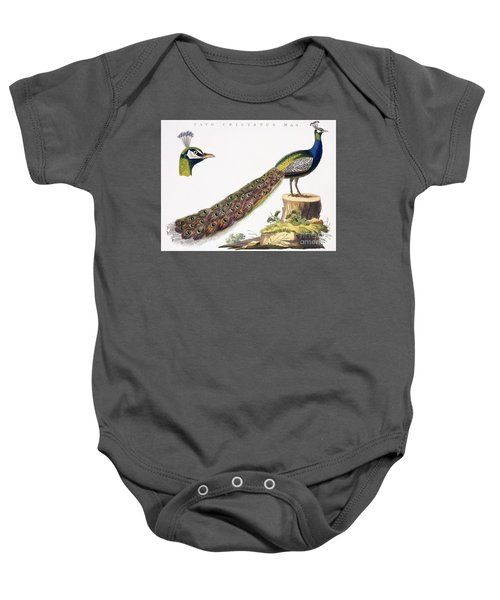 Peafowl Baby Onesie