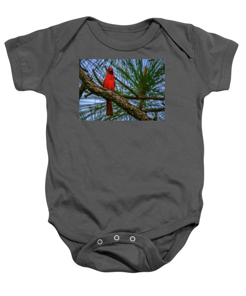 Perched Cardinal Baby Onesie