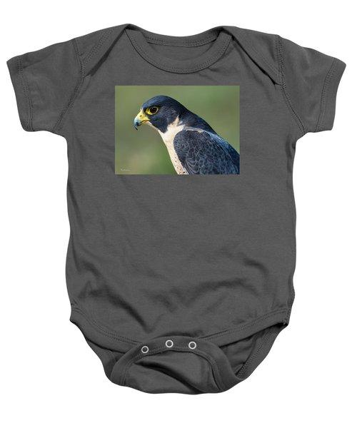 Peregrin Falcon Baby Onesie