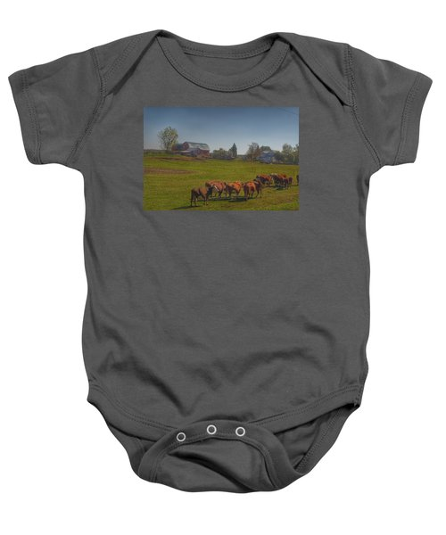 1014 - Plain Road Farm And Cows I Baby Onesie
