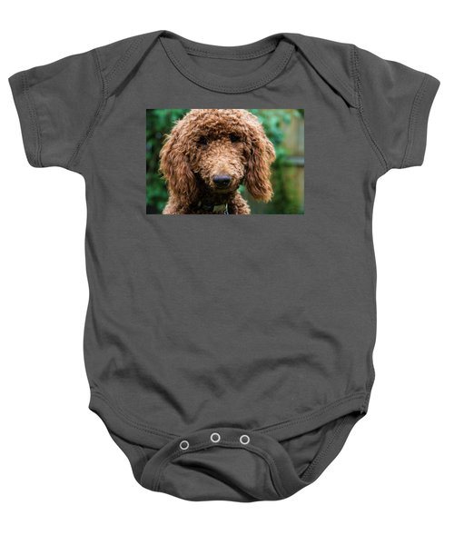 Baby Onesie featuring the photograph Poodle Pup by Jennifer Ancker