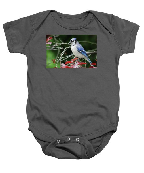 Pretty Blue Jay Baby Onesie
