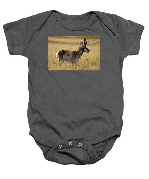 Pronghorn Antelope Baby Onesie
