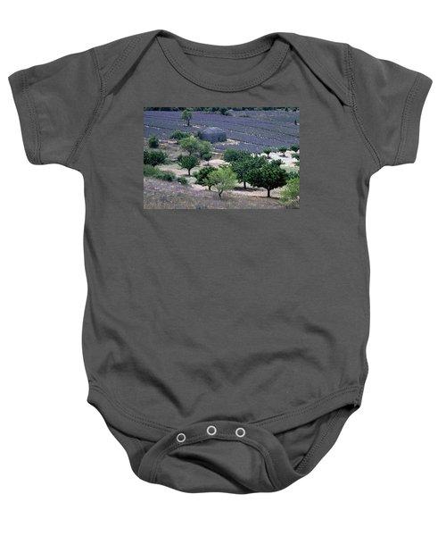 Provence Baby Onesie