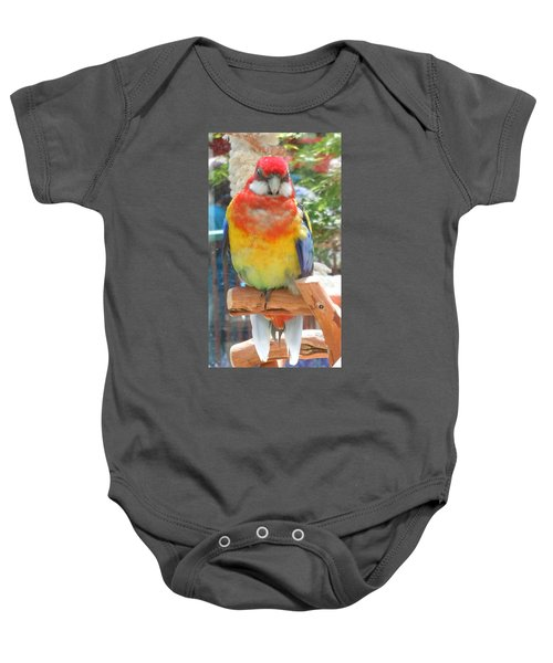 Multi-color Pudgy Budgie Baby Onesie