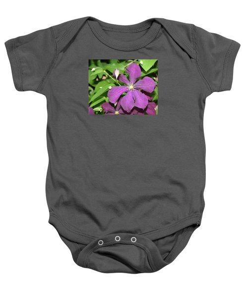 Purple Delite Baby Onesie