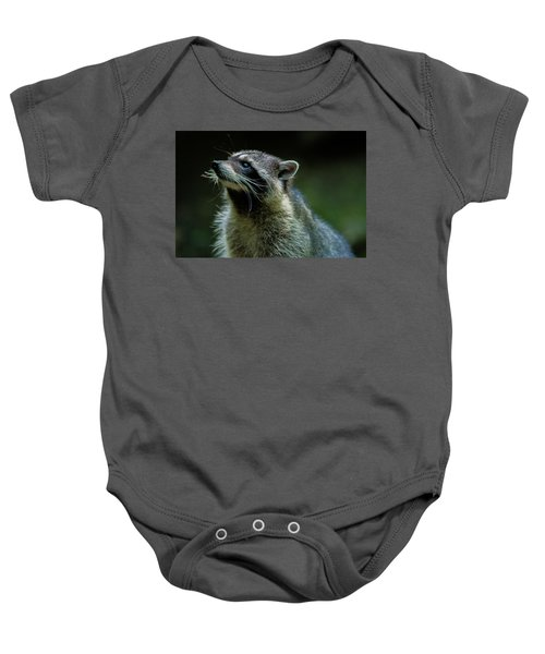 Raccoon 1 Baby Onesie