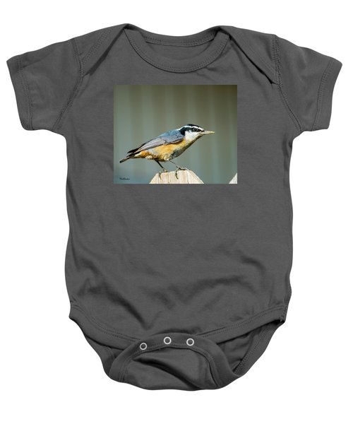 Red-breasted Nuthatch Baby Onesie