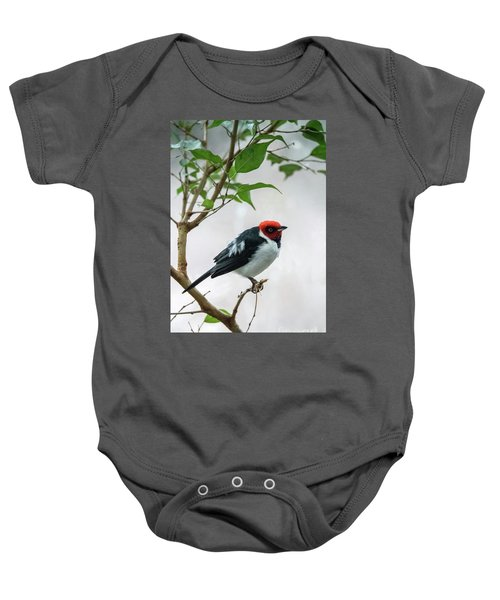 Red Capped Cardinal 2 Baby Onesie