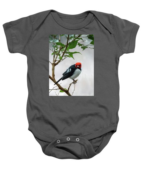 Red Capped Cardinal Baby Onesie