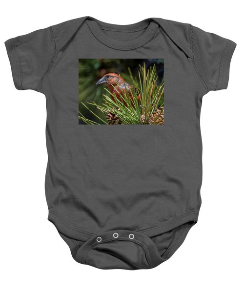 Red Crossbill Baby Onesie by Michael Cunningham
