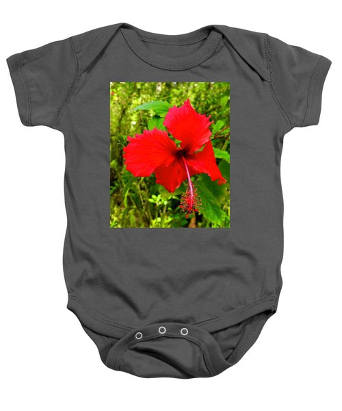 Red Hibiscus In Puna Baby Onesie