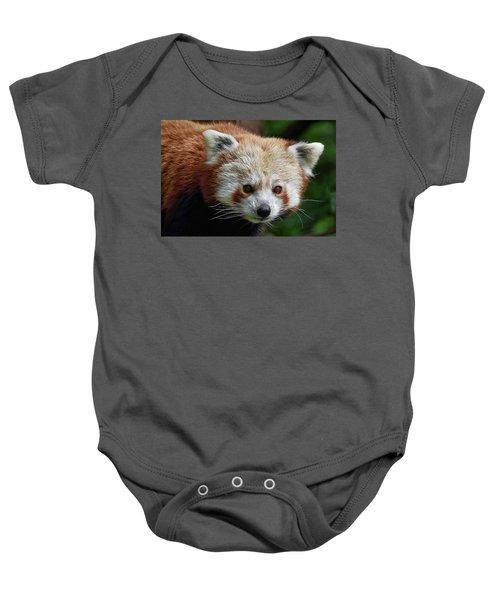 Red Panda Baby Onesie