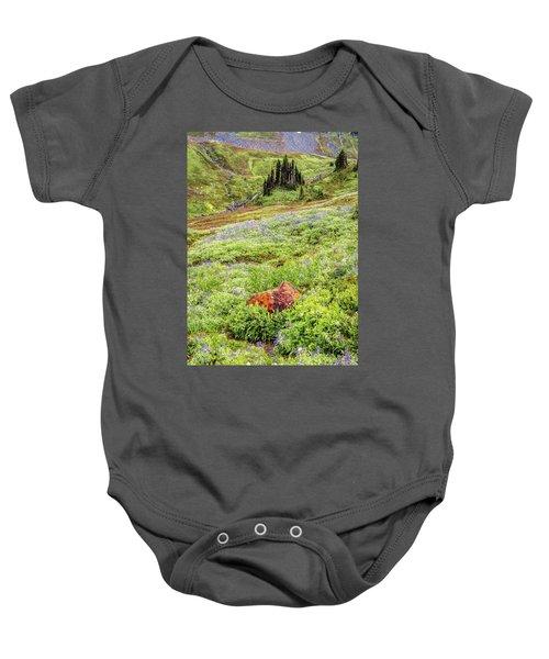 Red Rock Of Rainier Baby Onesie