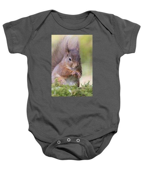 Red Squirrel - Scottish Highlands #1 Baby Onesie