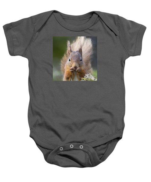 Red Squirrel - Scottish Highlands #28 Baby Onesie
