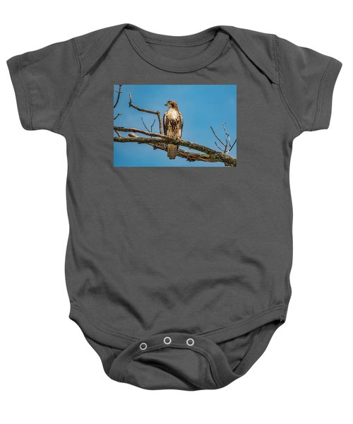 Red Tail Hawk Perched Baby Onesie