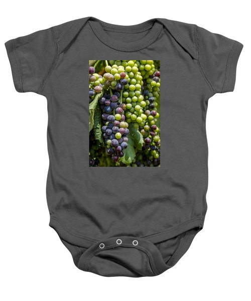 Red Wine Grapes In The Vineyard Baby Onesie