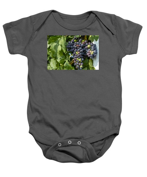 Red Wine Grapes On The Vine Baby Onesie