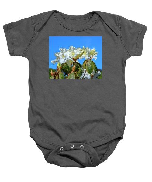 Rhododendron Ciliicalyx Dthn0213 Baby Onesie