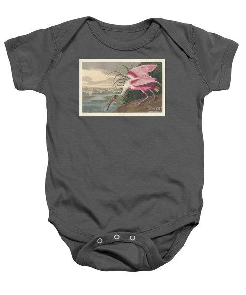 Roseate Spoonbill, 1836  Baby Onesie