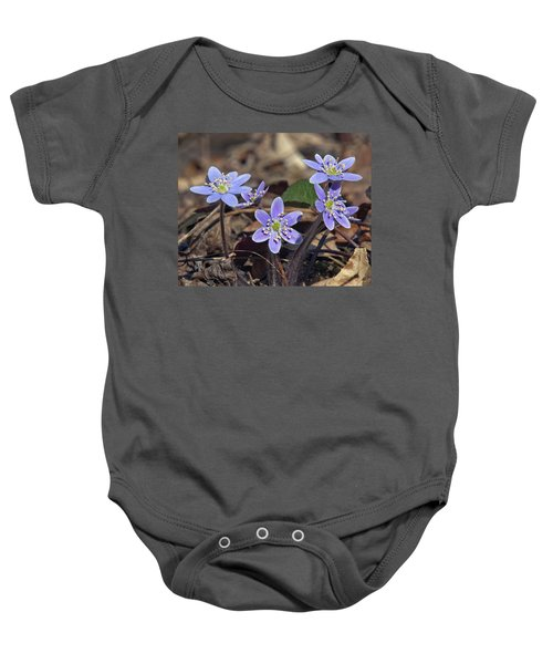 Round-lobed Hepatica Dspf116 Baby Onesie