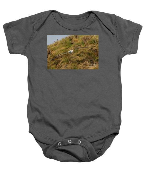 Royal Albatross 2 Baby Onesie by Werner Padarin