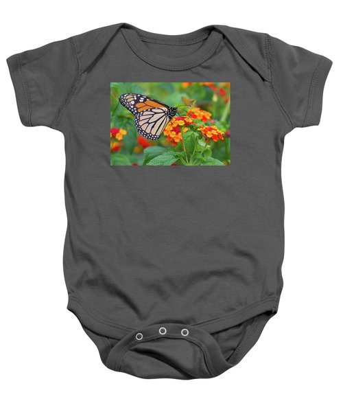 Royal Butterfly Baby Onesie