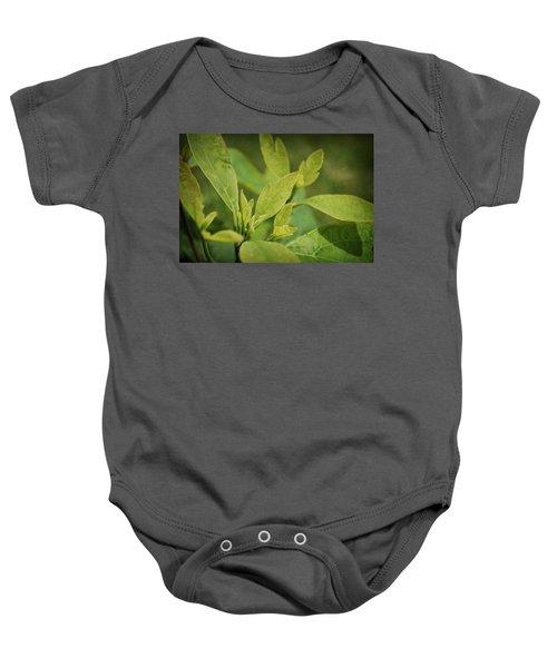 Sassafras Tree Baby Onesie