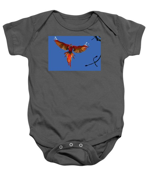 Scarlet Macaw On The Osa Peninsula Baby Onesie