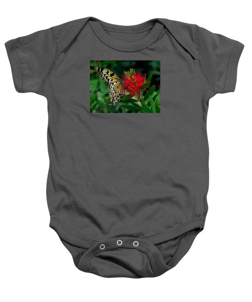 Searching For Nectar Baby Onesie