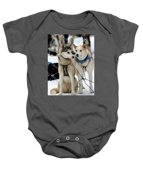 Sled Dogs Baby Onesie