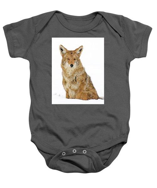 Snowy Coyote Baby Onesie