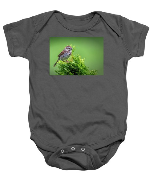 Song Sparrow Perched - Melospiza Melodia Baby Onesie