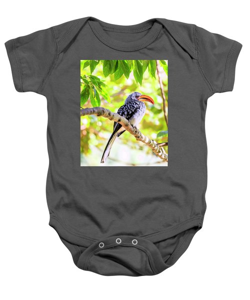 Southern Yellow Billed Hornbill Baby Onesie by Alexey Stiop