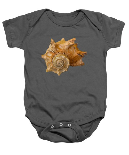 Spiral Shell Transparency Baby Onesie