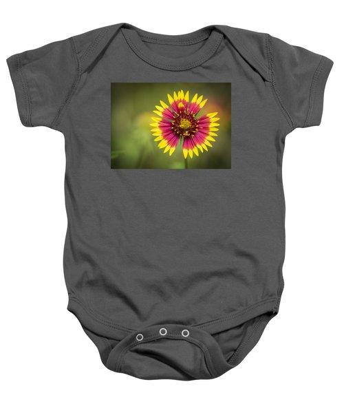 Spring Indian Blanket Baby Onesie