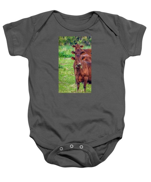 Stacked Up Cows          Baby Onesie
