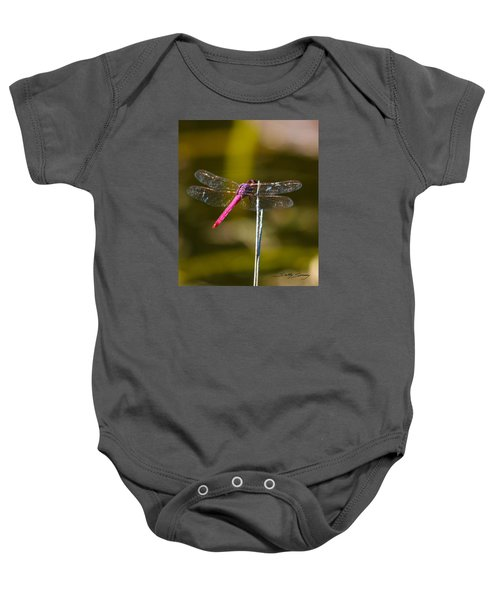 Stained Glass Wings Baby Onesie